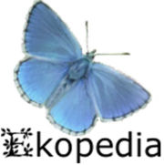 Yourte sur Ekopedia